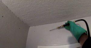 Gambar Cara Menghilangkan Rayap di Tembok yang Ampuh