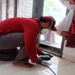 Jasa Anti Rayap di Bintaro